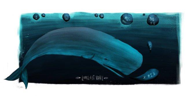 52_hertz_whale_by_kaanbagci-d7ddual