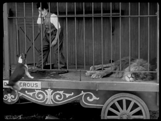 Chaplin. Circus.Dog