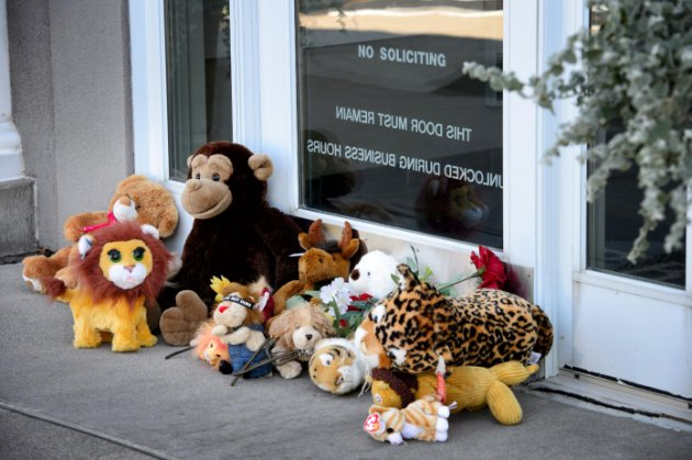 Stuffed animals are placed in front of Walter Palmer's dental practice, River Bluff Dental, in Bloomington, Minn., on Wednesday, July 29, 2015. Palmer, who went on a guided bow hunting trip for big game in Zimbabwe, said that he had no idea the lion he killed was protected and that he relied on the expertise of his local guides to ensure the hunt was legal.  (Glen Stubbe/Star Tribune via AP) MANDATORY CREDIT