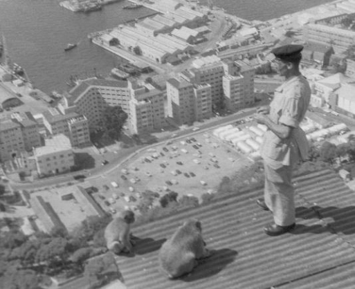 Alfred_Holmes_with_Barbary_Macaques