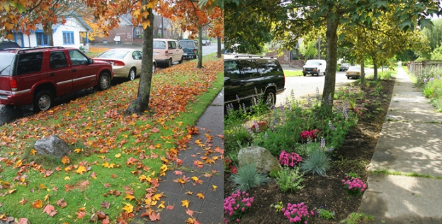 Before-and-after-shot-of-a-Pollinator-Pathway-on-Columbia-Street-in-Madrona