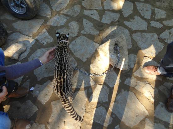 zoo-de-castellar.jpg