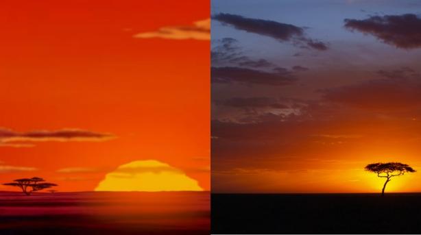 collagef.jpg